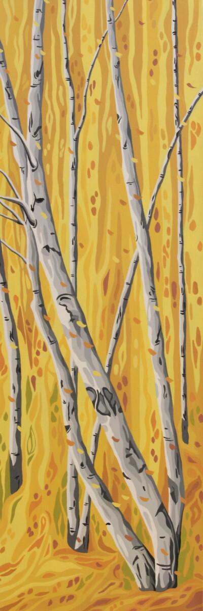 Birches in Fall 1